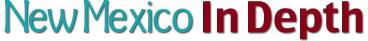 NM In Depth logo